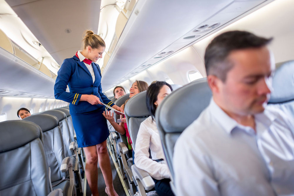 Flight Attendants Plane